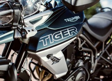Encore plus de style tigre